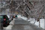 Москва. Зима. Остекленевший город