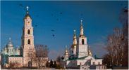 Грачи прилетели в Дивеевский монастырь