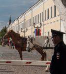 Казань. Кремль. Кони