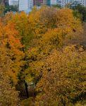 Осень. Скамейка