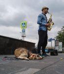 Москва. Уличный саксофонист и собака для пущей жалости