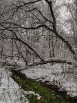 """В парке """"Фили"""". Первый снег"""