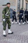 Стокгольм. Охрана королевского дворца. Типичный швед