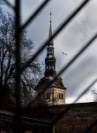 Таллин. Шпиль Домского собора
